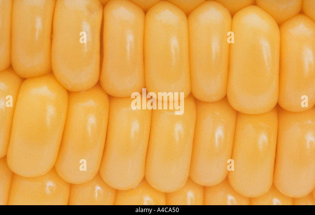 Sweet corn kernels close-up - Stock Image