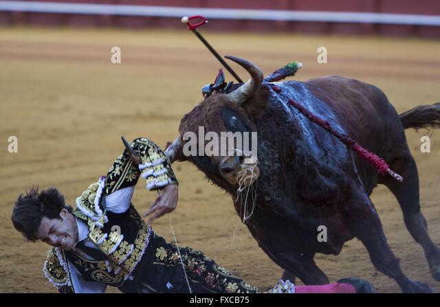 Seville, Spain. 14th Apr, 2016. Bullfighter Jose Manuel Garrido is gored by a bull during a bullfight of the ''Feria - Stock Image