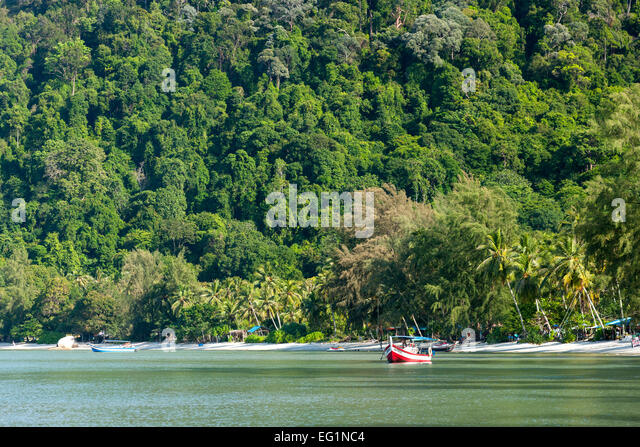 Monkey Beach in the Penang National Park in Penang, Malaysia. - Stock Image