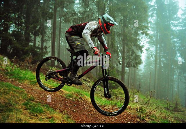 Downhill Trail, Thüringer Wald, Deutschland - Stock-Bilder