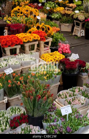 Flower stall, Bloemenmarkt, Amsterdam, Holland, Europe - Stock Image