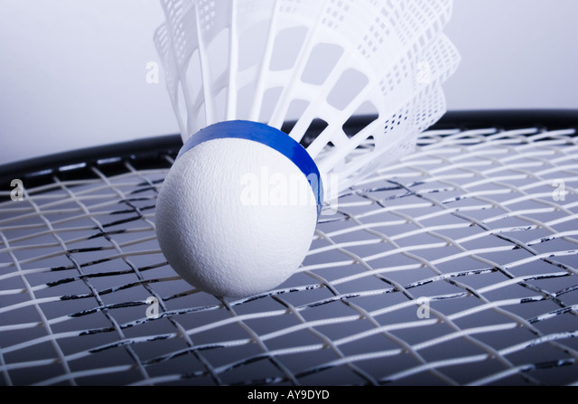 shuttle cock on badminton racquet - Stock Image