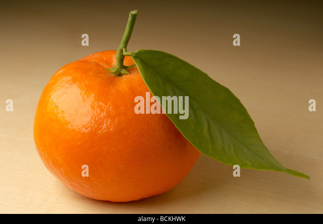 Mandarin on brown background - Stock Image