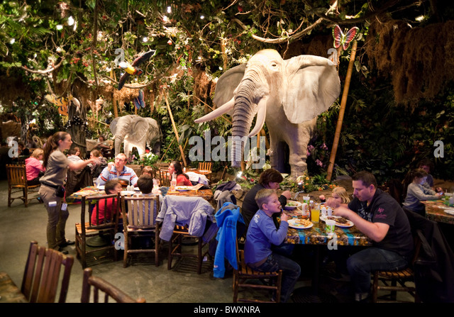 Rainforest Cafe Downtown Disney Florida Address