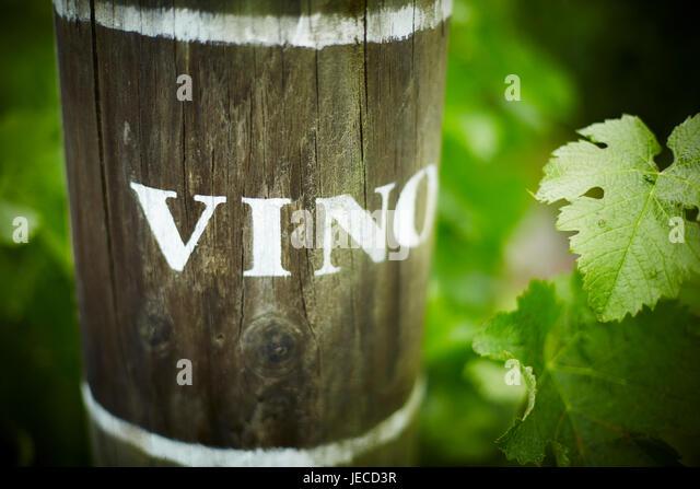Vino end row vine markings - Stock Image