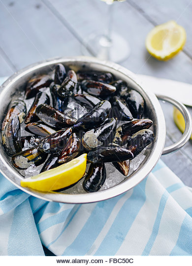 Mussels on ice ready to cook with lemon and white wine - Stock Image