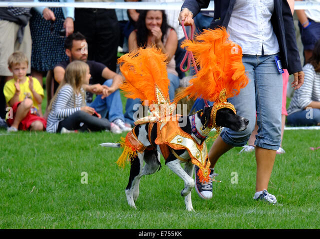 Battersea Dogs Cats Home Old Windsor Fun Day