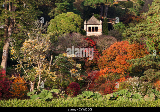 Autumn colours in the grounds of Mount Stewart, Northern Ireland. - Stock-Bilder