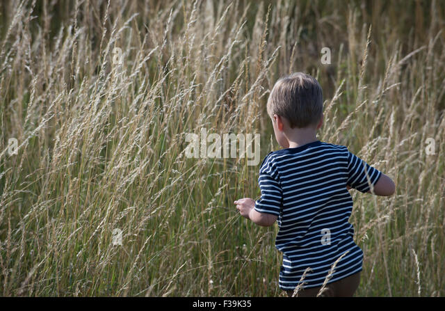 Rear view of a boy walking through long grass - Stock Image