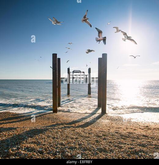 United Kingdom, Brighton West Pier - Stock Image
