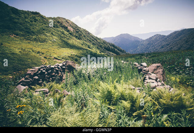 Mountains green valley with ancient stones fence Landscape Summer Travel scenic view in Abkhazia - Stock Image