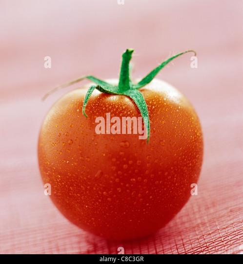 tomato - Stock Image