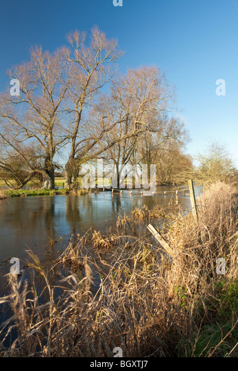 The upper reaches of the River Thames above Cricklade in Wiltshire, Uk - Stock Image