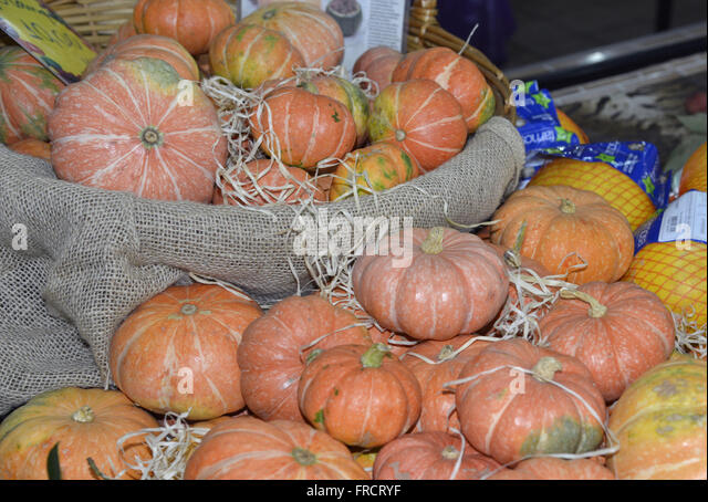 Pumpkin-squash and melons for sale in City Market - Stock Image