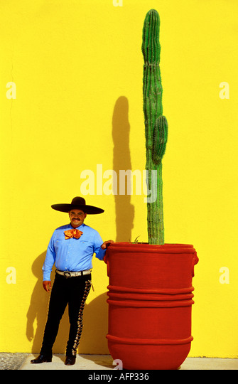 MEXICO, Cabo San Lucas, colorful mexican cowboy standing near tall cactus plant with bright yellow background. - Stock Image