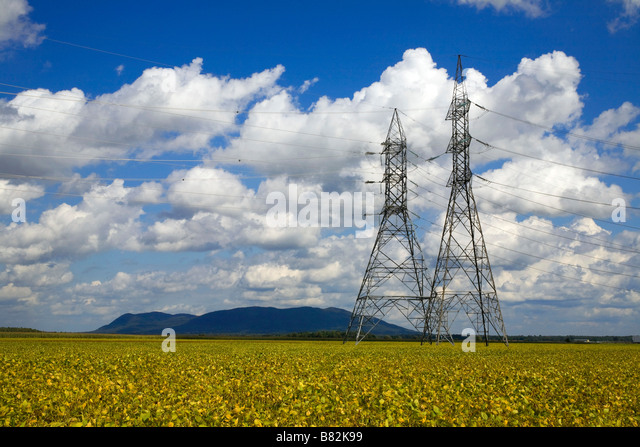 Hydro tower over a soya bean field - Stock Image