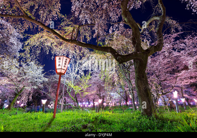 Kyoto, Japan at Hirano Temple festival grounds in spring. The lantern reads 'Moonrise, Hirano Temple' - Stock Image