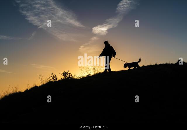 Chanctonbury Ring Dog Walk