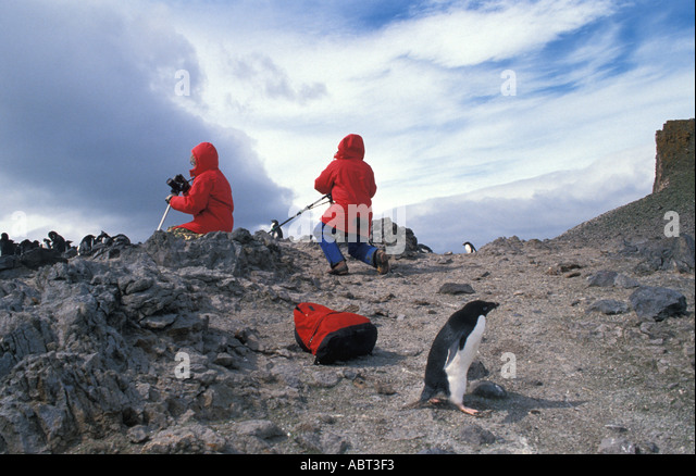 ANTARCTICA two people photographing penguins with a penguin behind them - Stock Image