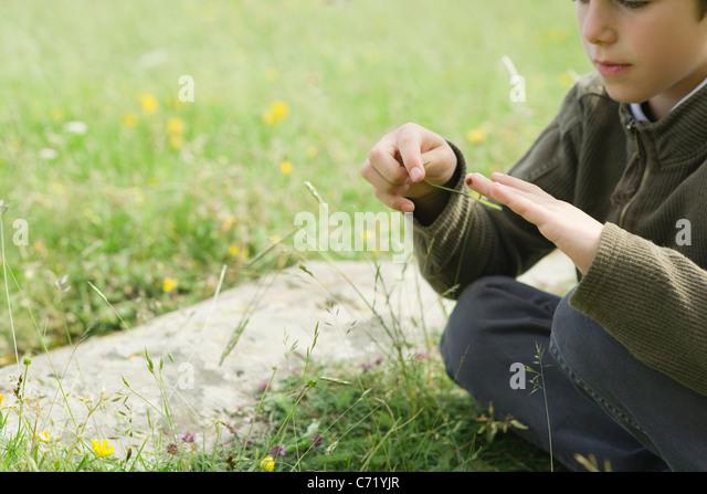 Boy sitting on grass, playing with ladybug - Stock Image