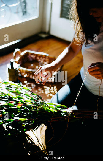 Woman working on plant cuttings - Stock-Bilder