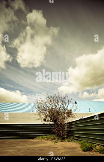 Urban landscapes Palmerston North New Zealand - Stock-Bilder