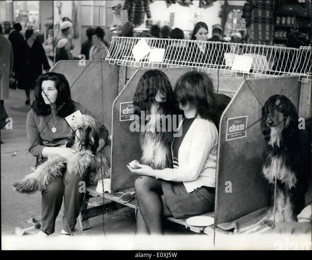 Trade Stands Crufts : Crufts champion stock photos