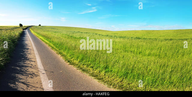 Panoramic View of Field and Road in Somerset, England, UK - Stock Image