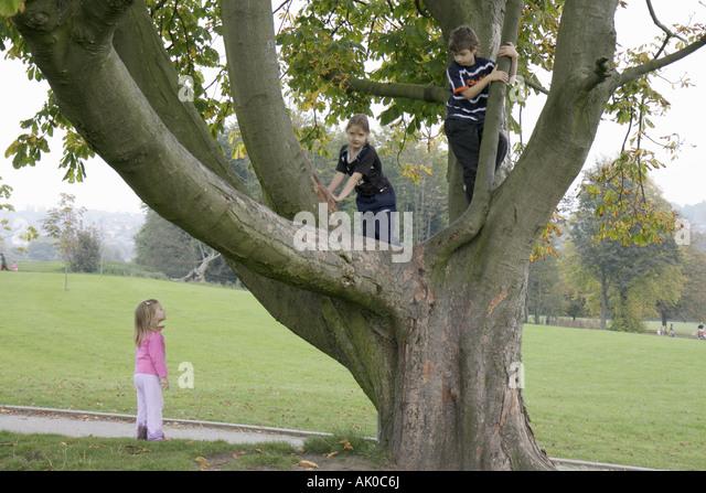 UK, England, Manchester, Heaton Park, tree, boy, girl, climb, - Stock Image