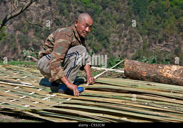 A man makes screens for the walling and ceilings of houses or for fencing from split bamboo. - Stock Image