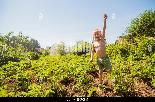 Boy among plants - Stock-Bilder