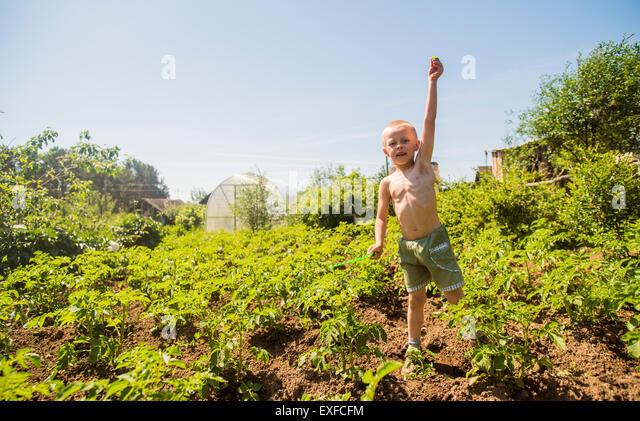 Boy among plants - Stock-Bilder