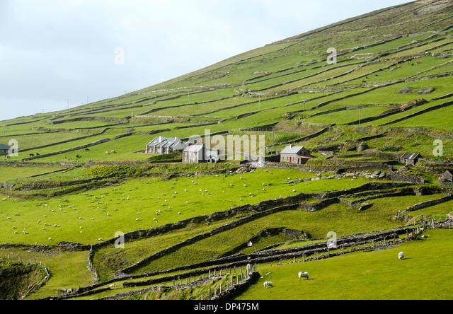 Slea Head Drive with stone houses, Dingle Peninusla, Ireland. - Stock Image