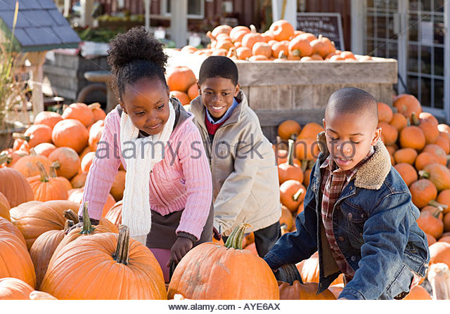Children and lots of pumpkins - Stock Image