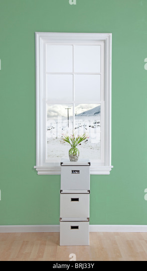 boxes with flowers on top in a room  and snow out the window - Stock Image