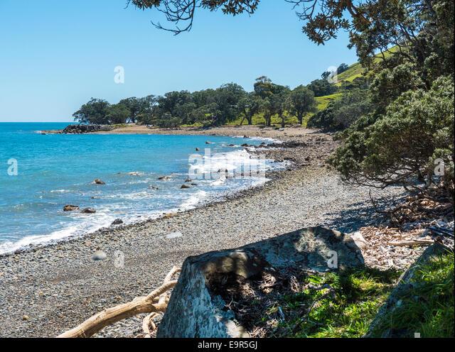 New Zealand coastline near Amodeo Bay, Coromandel Peninsular, New Zealand - Stock Image