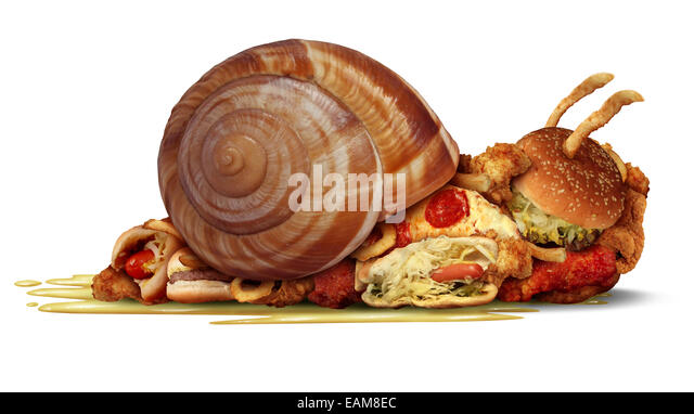 Sluggish diet and weight loss concept as a group of fast food as hamburgers hotdog french fries and fried chicken - Stock Image