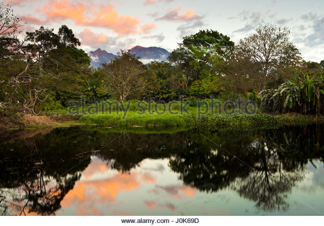 Trees and mirrored reflections, and last light on Volcan Baru, 3475 m, the highest point in Panama. - Stock-Bilder