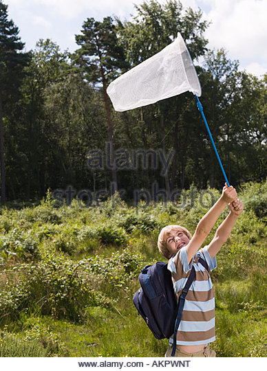 Boy with butterfly net - Stock Image