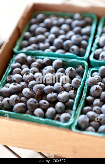 Baskets of organic blueberries packaged for sale. Applegate Valley, Oregon. - Stock Image