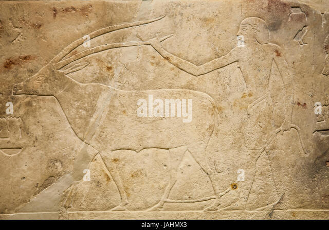 Madrid, Spain - February 24, 2017: Relief depicting livestock scene 2010 BC at National Archeological  Museum of - Stock Image