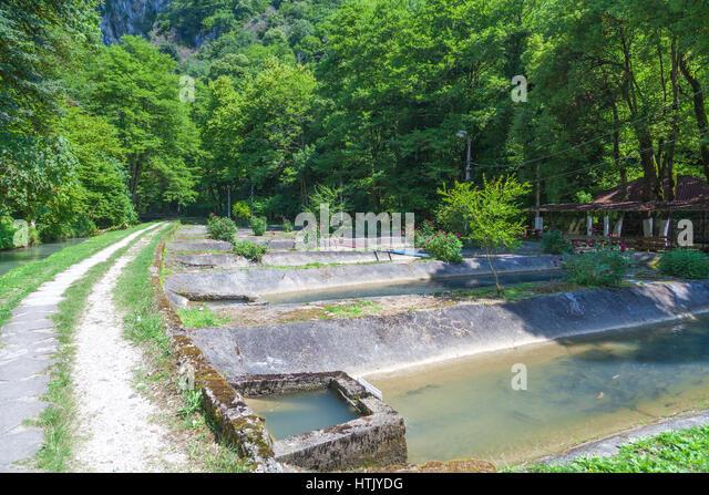 Concrete pools on a trout farm in Abkhazia - Stock Image