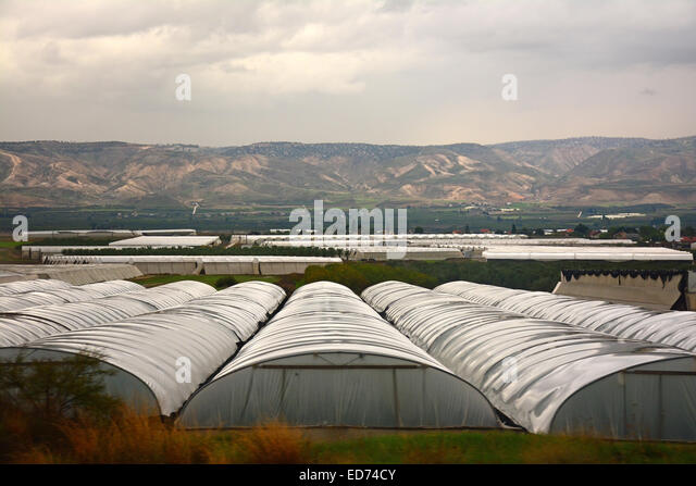 Green houses, Jordan valley, Israel - Stock Image