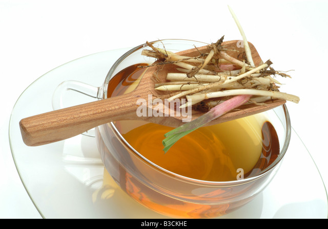 how to make couch grass tea