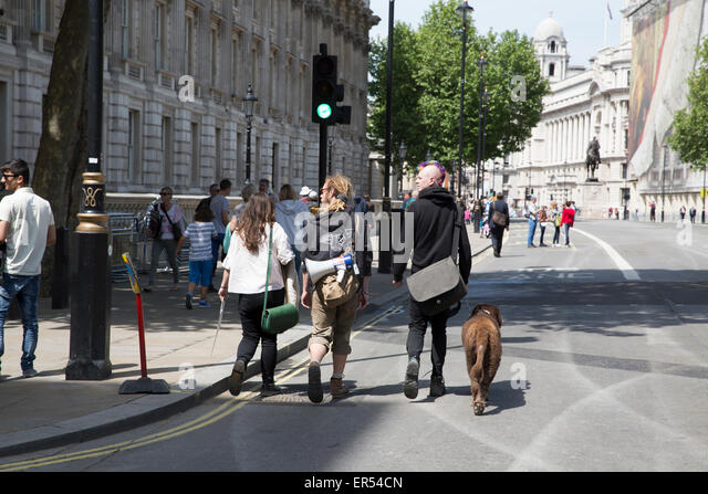 London,UK,27th May 2015,Visitors walk up Whitehall with a loud hailer in Londo Credit: Keith Larby/Alamy Live News - Stock Image