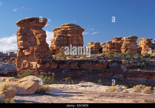 The Needles, Canyonlands National Park, Utah, USA, America - Stock Image