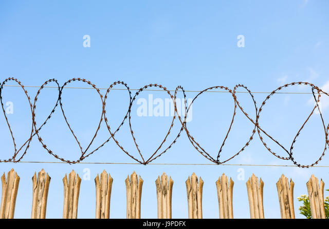 Razor wire on the top of Palisade Security fencing. - Stock Image