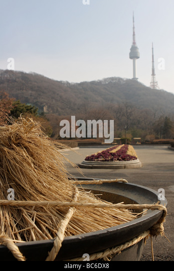 pot of straw for protect plant from the cold, namsan park - Stock Image