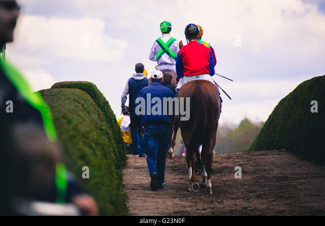 riders before horse racing circuit competition - Stock Image