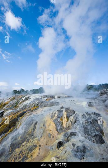 Rotorua, Whakarewarewa thermal aera, Pohutu Geysir - Stock Image